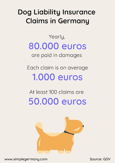 Infographic for dog liability insurance claims in Germany