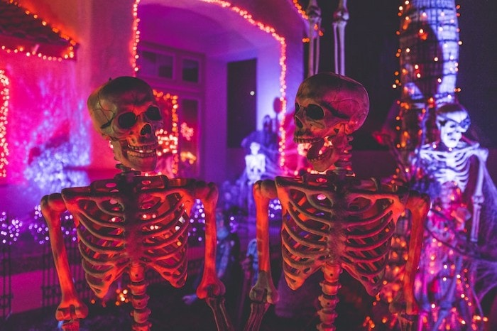 Skeletons in front of decorated house for Halloween