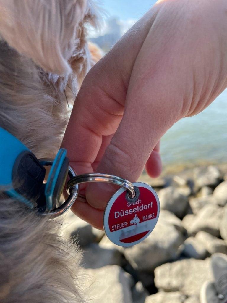 A German dog tax tag