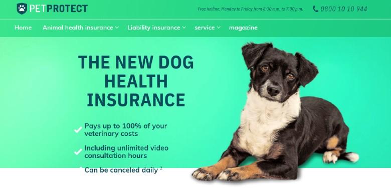 Screenshot of PetProtect Dog Health Insurance